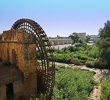 Old Water Mill and Roman Bridge - Cordoba by MikeSquires