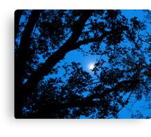Knights Sky Canvas Print