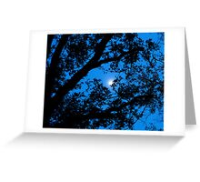 Knights Sky Greeting Card
