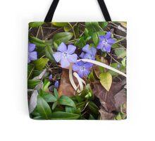 Nature's Ribbon Tote Bag