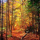 Fall's End ! by Elfriede Fulda