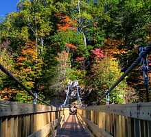 Turkey Run Suspension Bridge by Adam Bykowski