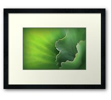 Ruffles and Flourishes Framed Print