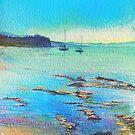 Sooty Oystercatcher, Blue Day, Blackmans Bay. by melhillswildart