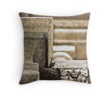 The Great Architects Throw Pillow
