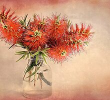 Bottle Brush! by Lyn Darlington