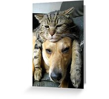 The best of friends  Greeting Card