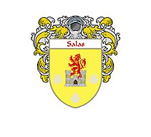 Salas Coat of Arms/Family Crest Photographic Print