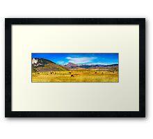 Cattle Grazing Autumn Panorama Framed Print
