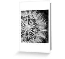 flower head Greeting Card