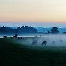 Meifod Mist by melek0197
