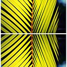 Palm Leafs Collage by tropicalsamuelv