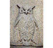 owl granite relief Photographic Print