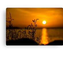 greek sunset Canvas Print