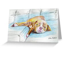 Cute Little Pit Bull Puppy Sleeping on Couch - Painted Sketch Greeting Card