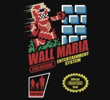 Wall mario by Baznet
