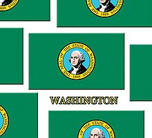 Iphone Case - State Flag of Washington V by Mark Podger