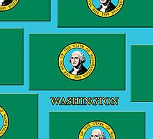 Iphone Case - State Flag of Washington VII by Mark Podger