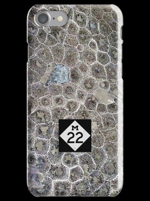 Petoskey Stone, M22 by James Lady