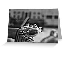 He who has a why to live can bear almost any how. Friedrich Nietzsche... Got Featured Work:) Greeting Card