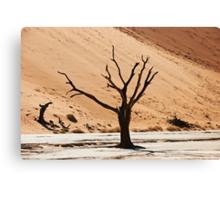 Dead Vlei in Namib Desert Canvas Print