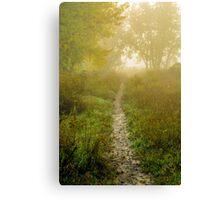 Morning Walk Canvas Print
