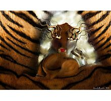 Tiger doll  Photographic Print