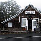 Ocean Cove Store by teresalynwillis
