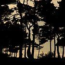 Coastal Trees by teresalynwillis