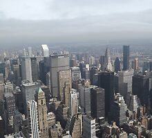 Aerial View of Midtown Manhattan, As Seen From Empire State Building Observation Deck, New York City by lenspiro