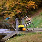 OLD BICYCLE DECORATED FOR AUTUMN by Pauline Evans
