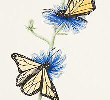 Get Well Soon Butterflies by jkartlife