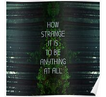 How Strange It Is To Be Anything At All Poster