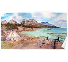 Three Shags on a rock- Honeymoon Bay, Freycinet. Poster