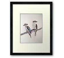 Kookaburras Framed Print