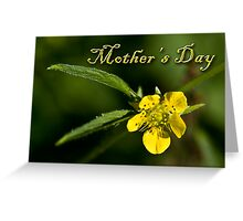Mother's Day Buttercup Greeting Card
