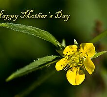 Happy Mother's Day Buttercup by jkartlife