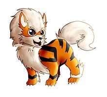 Chibi Arcanine From Pokemon Photographic Print