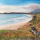 Pirates Bay, EagleHawk Neck. by melhillswildart