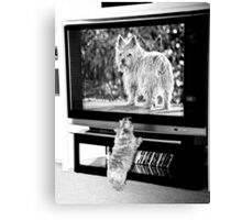 TV Time in Black and White Canvas Print