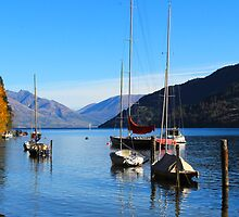 Colourful boats in Queenstown lake, New Zealand, NZ by yolan