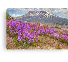 Color from Chaos - Mt. St. Helens Canvas Print