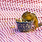 Chipmunk Picnic by Valerie  Fuqua