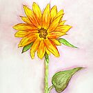 A Late Bloomer by Anne Gitto