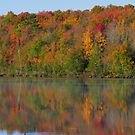 Autumn on the River by lorilee