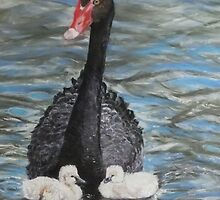 Mother and Cygnets by Trudy  Nicholson