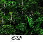 Real Life Pantone: Forest Green by coffeespoon