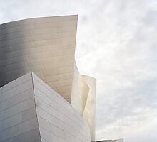 The Walt Disney Concert Hall by Cora Wandel