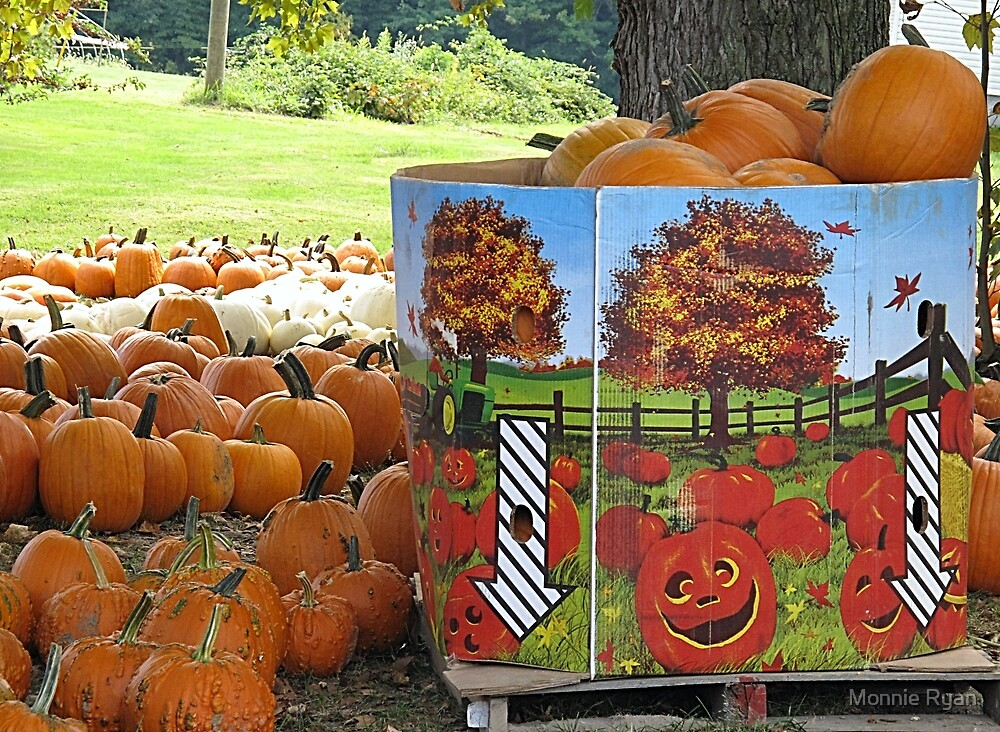 Piles O' Pumpkins by Monnie Ryan