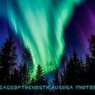 Northern British Columbia's Northern Nights by peaceofthenorth